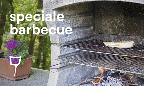 Speciale Barbecue