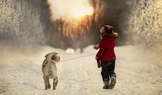 L'atmosfera dell'inverno…