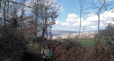 Da Polso di Soveria Mannelli lungo un  tratto del  vecchio sentiero per  Case Gesonte e Case Staglio