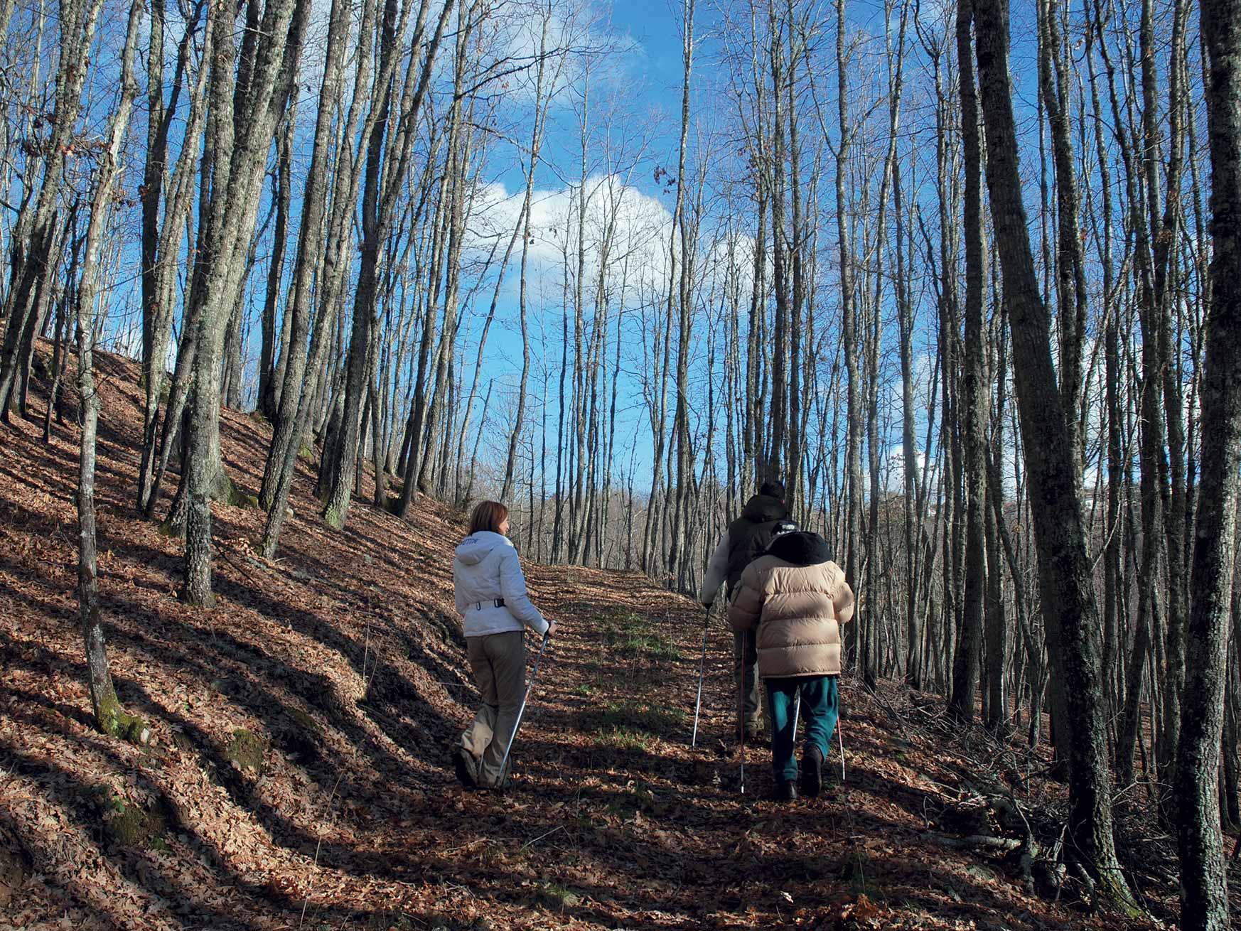 Da Soveria Mannelli a Monte San Tommaso